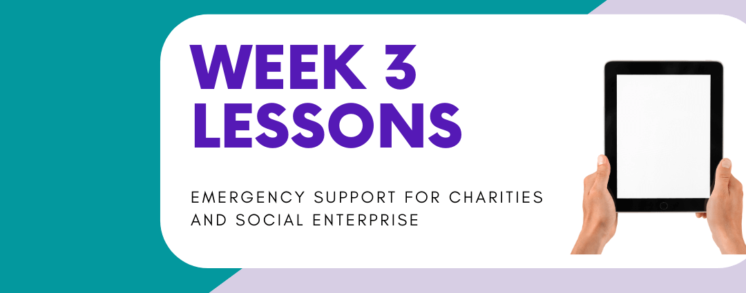Week 3 Lessons: Emergency Support for Charities & Social Enterprises